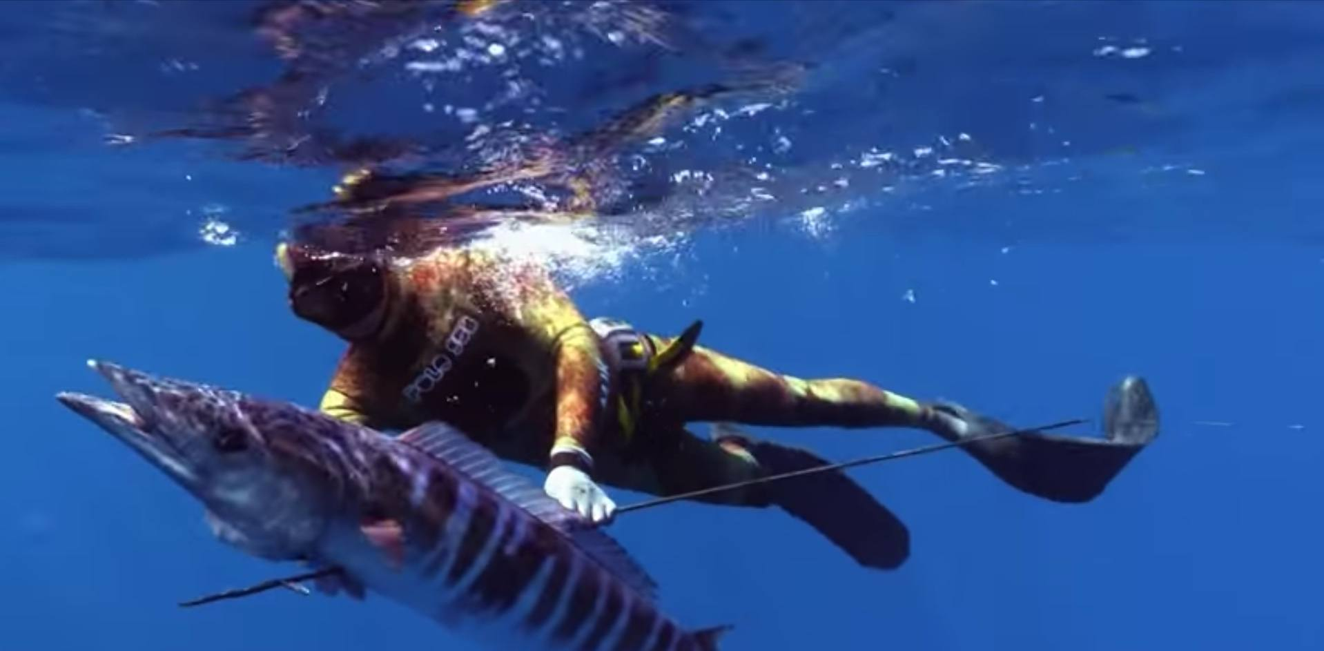 Best Spearfishing Locations